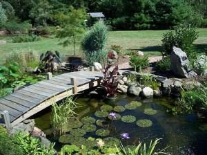 Popular Pond Garden Ideas For Beautiful Backyard12