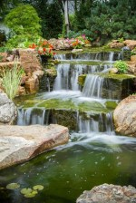 Popular Pond Garden Ideas For Beautiful Backyard14