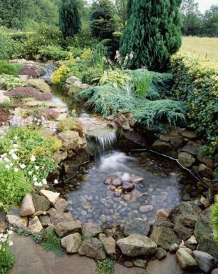 Popular Pond Garden Ideas For Beautiful Backyard15