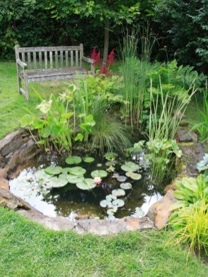 Popular Pond Garden Ideas For Beautiful Backyard17