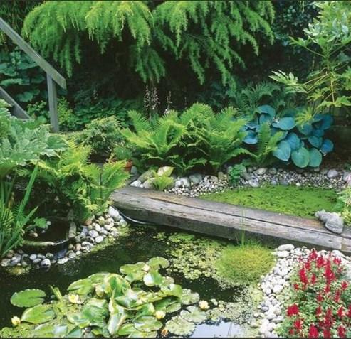 Popular Pond Garden Ideas For Beautiful Backyard19