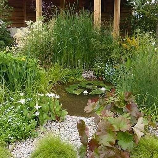 Popular Pond Garden Ideas For Beautiful Backyard40