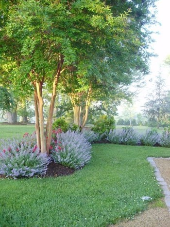 Amazing Big Tree Landscaping Ideas10