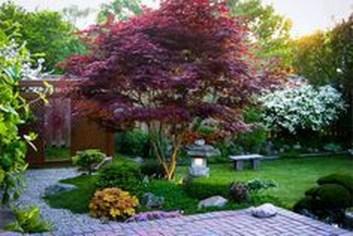 Amazing Big Tree Landscaping Ideas17