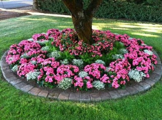 Amazing Big Tree Landscaping Ideas24