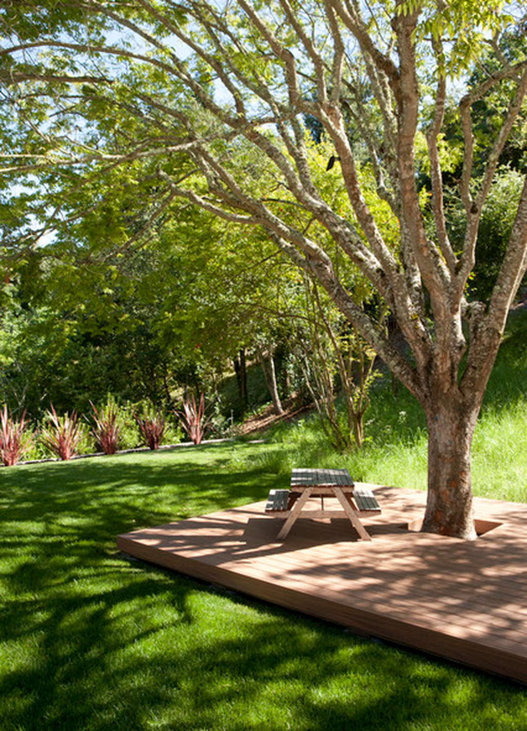 Amazing Big Tree Landscaping Ideas38