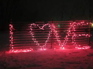 Awesome Valentine Backyard Ideas10