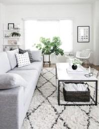 Lovely Black And White Living Room Ideas31
