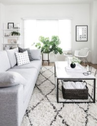 Lovely Black And White Living Room Ideas31