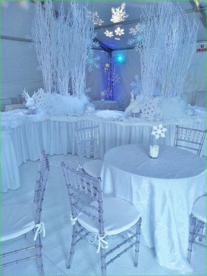Awesome Winter Wonderland Wedding Decoration07