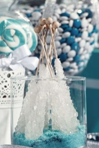 Awesome Winter Wonderland Wedding Decoration10