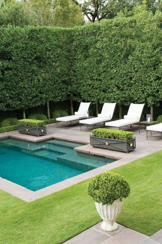 Landscaping Ideas For Backyard Swimming Pools09