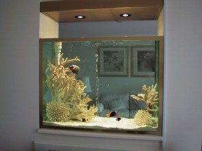 Awesome Aquarium Partition Ideas06