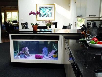 Awesome Aquarium Partition Ideas12