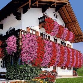 Gorgeous Flower On Balcony Ideas08
