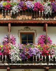 Gorgeous Flower On Balcony Ideas10