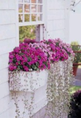 Gorgeous Flower On Balcony Ideas33