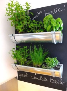 Simple Indoor Herb Garden Ideas For More Healthy Home Air06