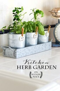 Simple Indoor Herb Garden Ideas For More Healthy Home Air10
