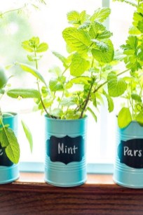 Simple Indoor Herb Garden Ideas For More Healthy Home Air13