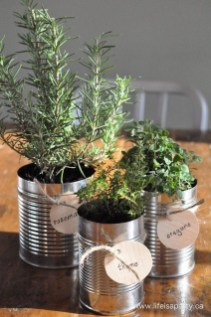 Simple Indoor Herb Garden Ideas For More Healthy Home Air42