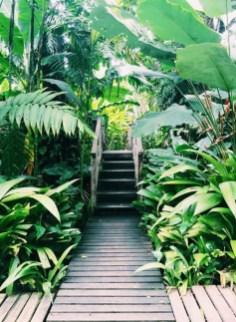 Beautiful Shady Gardens Design Ideas15