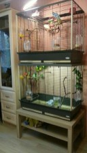Unique Diy Pet Cage Design Ideas You Have To Copy13