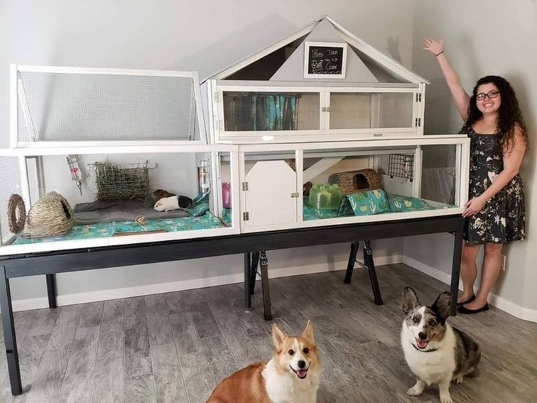 Unique Diy Pet Cage Design Ideas You Have To Copy16