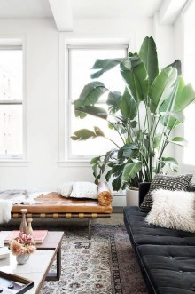 Awesome Indoor Plant Decoration Ideas To Make Natural Comfort In Your Home13