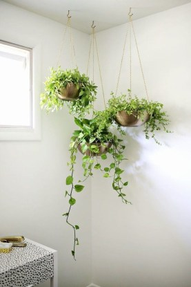 Awesome Indoor Plant Decoration Ideas To Make Natural Comfort In Your Home15