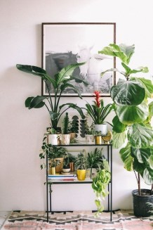 Awesome Indoor Plant Decoration Ideas To Make Natural Comfort In Your Home20