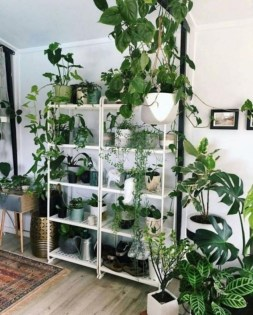 Awesome Indoor Plant Decoration Ideas To Make Natural Comfort In Your Home30