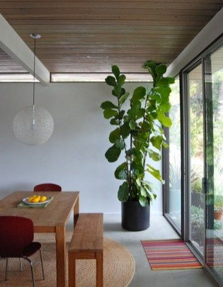 Awesome Indoor Plant Decoration Ideas To Make Natural Comfort In Your Home33