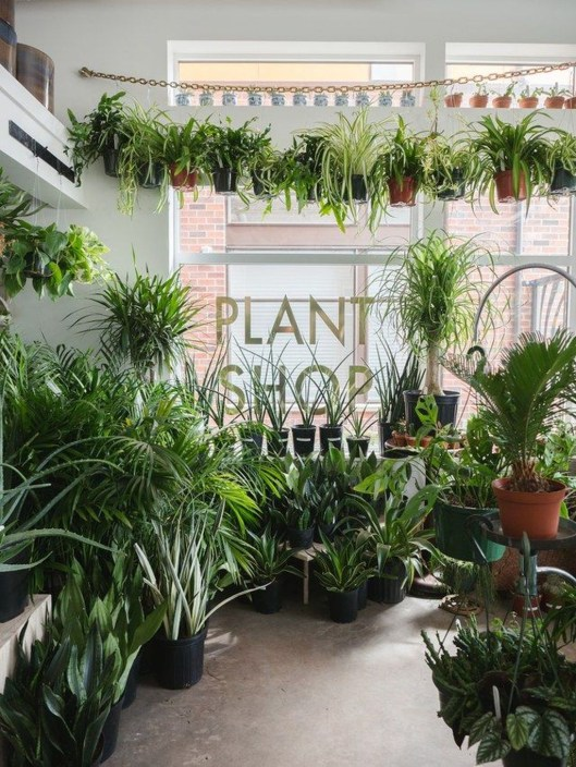 Awesome Indoor Plant Decoration Ideas To Make Natural Comfort In Your Home47