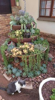 Gorgeous Succulent Garden Ideas For Your Backyard10
