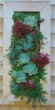 Gorgeous Succulent Garden Ideas For Your Backyard29