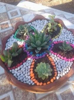 Gorgeous Succulent Garden Ideas For Your Backyard37