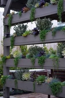 Gorgeous Succulent Garden Ideas For Your Backyard38