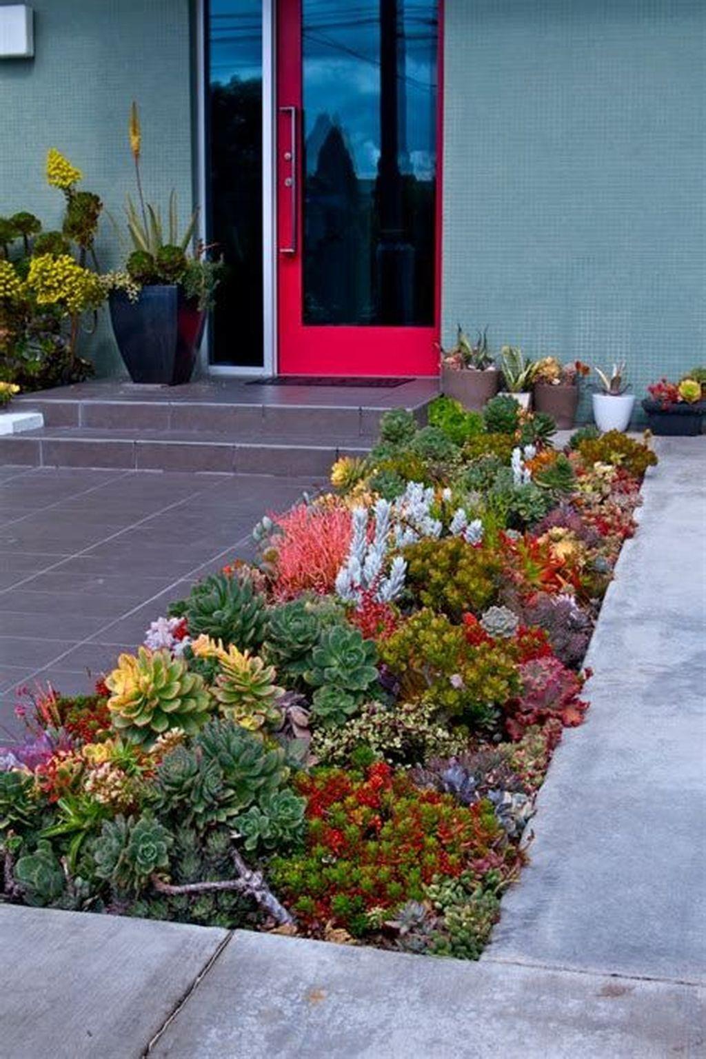 Gorgeous Succulent Garden Ideas For Your Backyard44