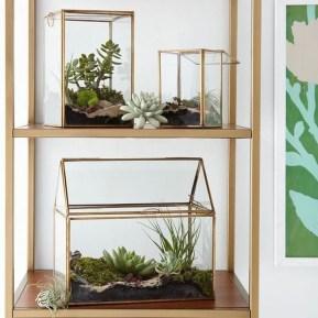 Unique And Beautiful Terrarium Design Ideas To Decorate Your Home02