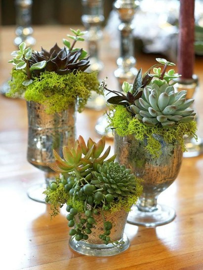 Unique And Beautiful Terrarium Design Ideas To Decorate Your Home06