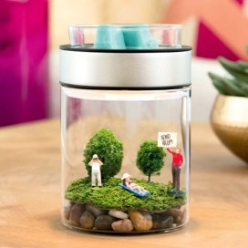 Unique And Beautiful Terrarium Design Ideas To Decorate Your Home07