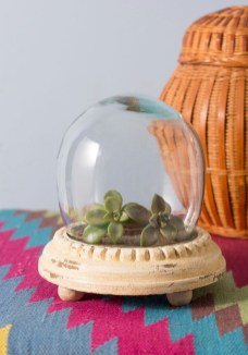 Unique And Beautiful Terrarium Design Ideas To Decorate Your Home25