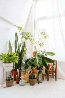 Unique And Beautiful Terrarium Design Ideas To Decorate Your Home38