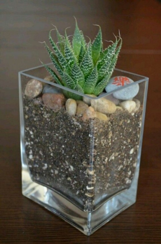 Unique And Beautiful Terrarium Design Ideas To Decorate Your Home42