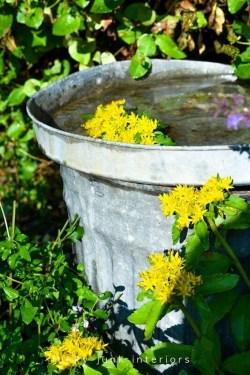 Bird Bath Design Ideas For Your Backyard Inspiration08