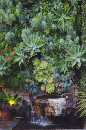 Succulents Living Walls Vertical Gardens Ideas08
