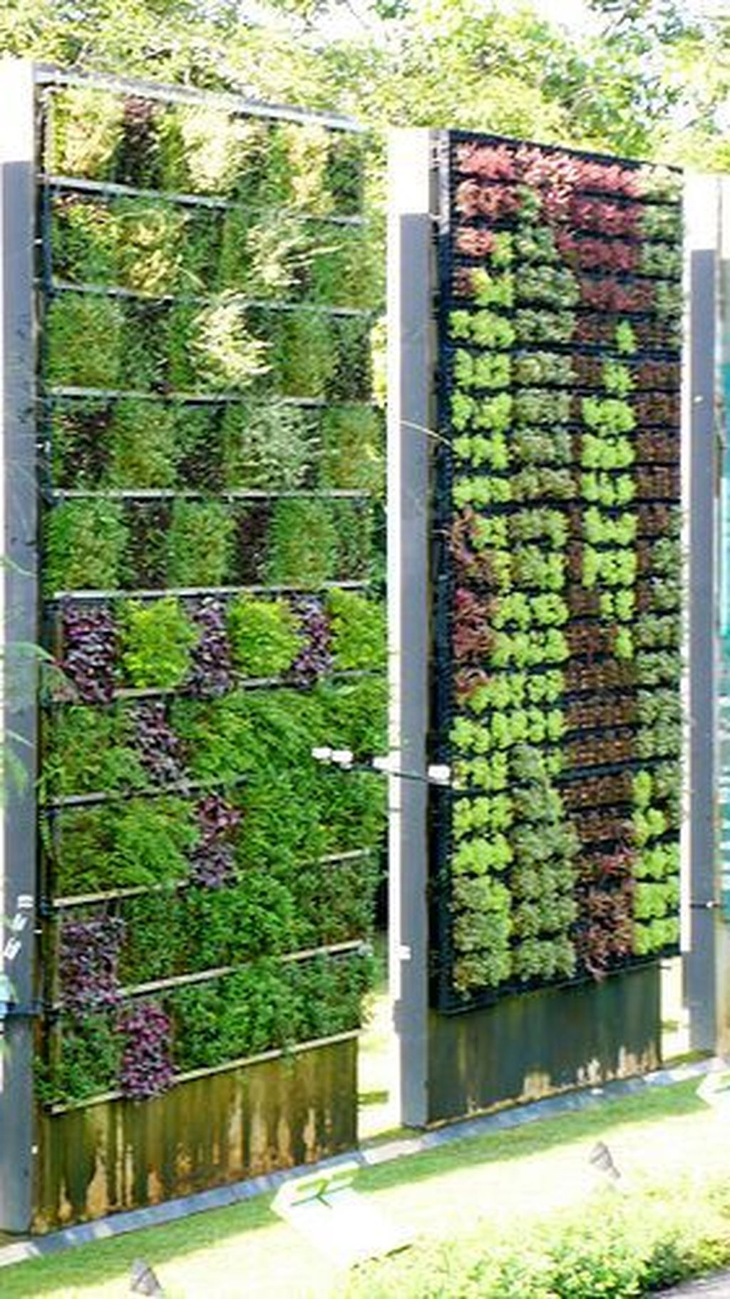 Succulents Living Walls Vertical Gardens Ideas21