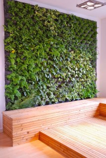 Succulents Living Walls Vertical Gardens Ideas23