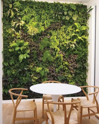 Succulents Living Walls Vertical Gardens Ideas36